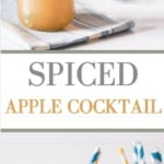 Spiced Apple Cocktail | Recipes From A Pantry