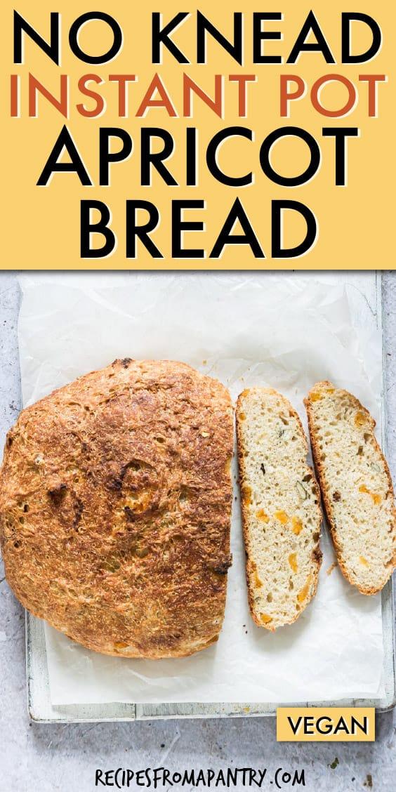 NO KNEAD INSTANT POT APRICOT BREAD