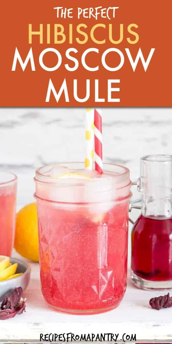 HIBISCUS MOSCOW MULE