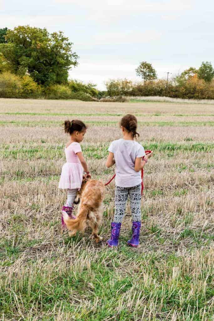 Children playing with the dog - recipesfromaapantry.com