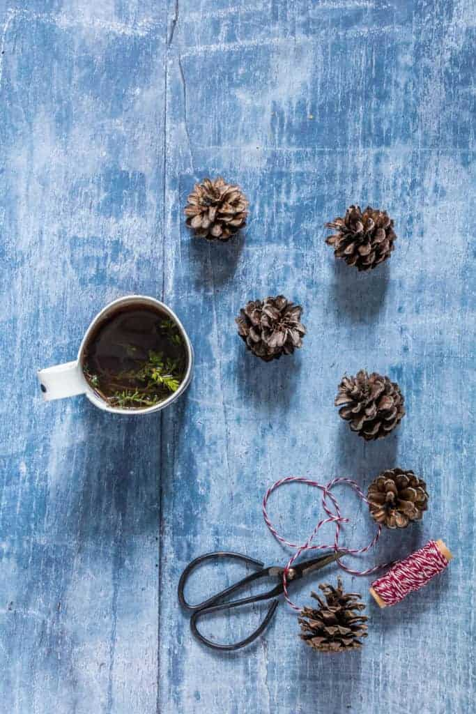 pine cones and tea - recipesfromapantry.com