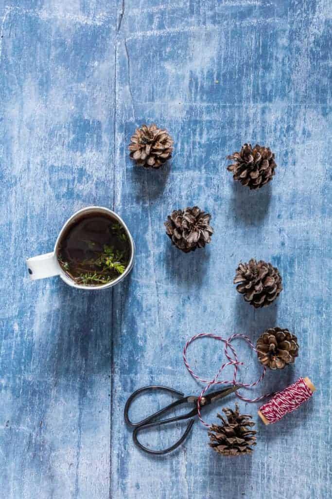 pine cones and tea - recipesfromapantry.com