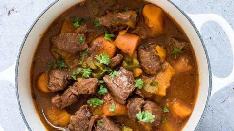 Instant Pot Venison Stew + Video Tutorial {Gluten-Free}