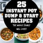 instant pot dump and go recipes