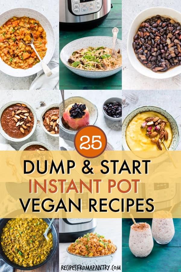 25 dump and start vegan instant pot recipes