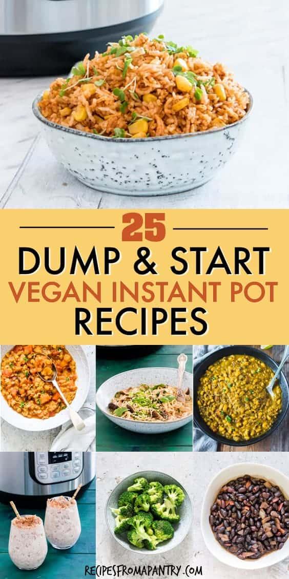 25 dump and go pressure cooker recipes