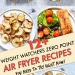 WEIGHT WATCHERS ZERO POINT AIR FRYER RECIPES
