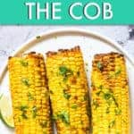 WEIGHT WATCHERS AIR FRYER CORN ON THE COB