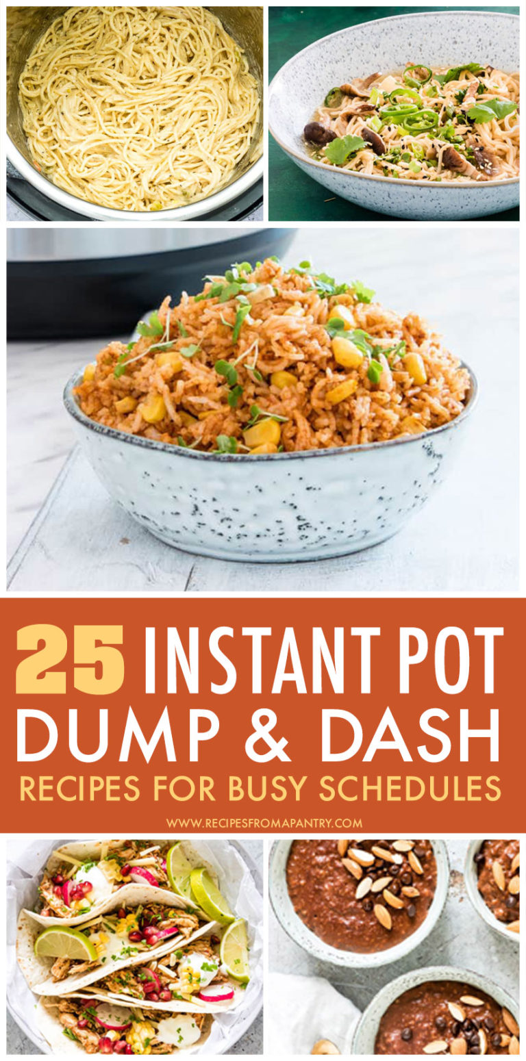 This is a pinterest pin linking to the Instant Pot dump and dash recipes page.