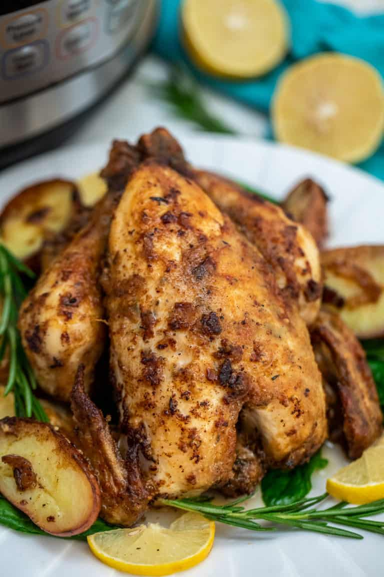 the completed instant pot cornish hen with gravy