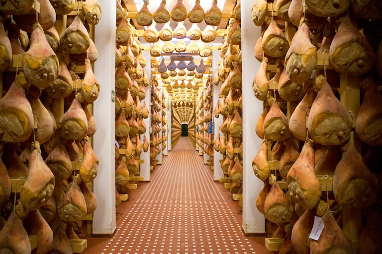 parma hams inside the curing room