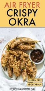 AIR FRYER CRISPY OKRA
