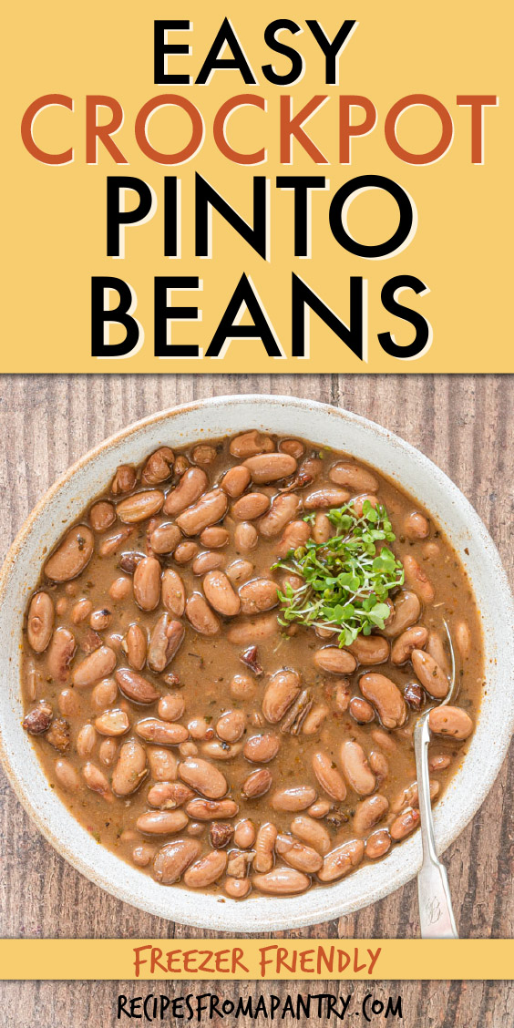 top down view of pinto beans in a bowl