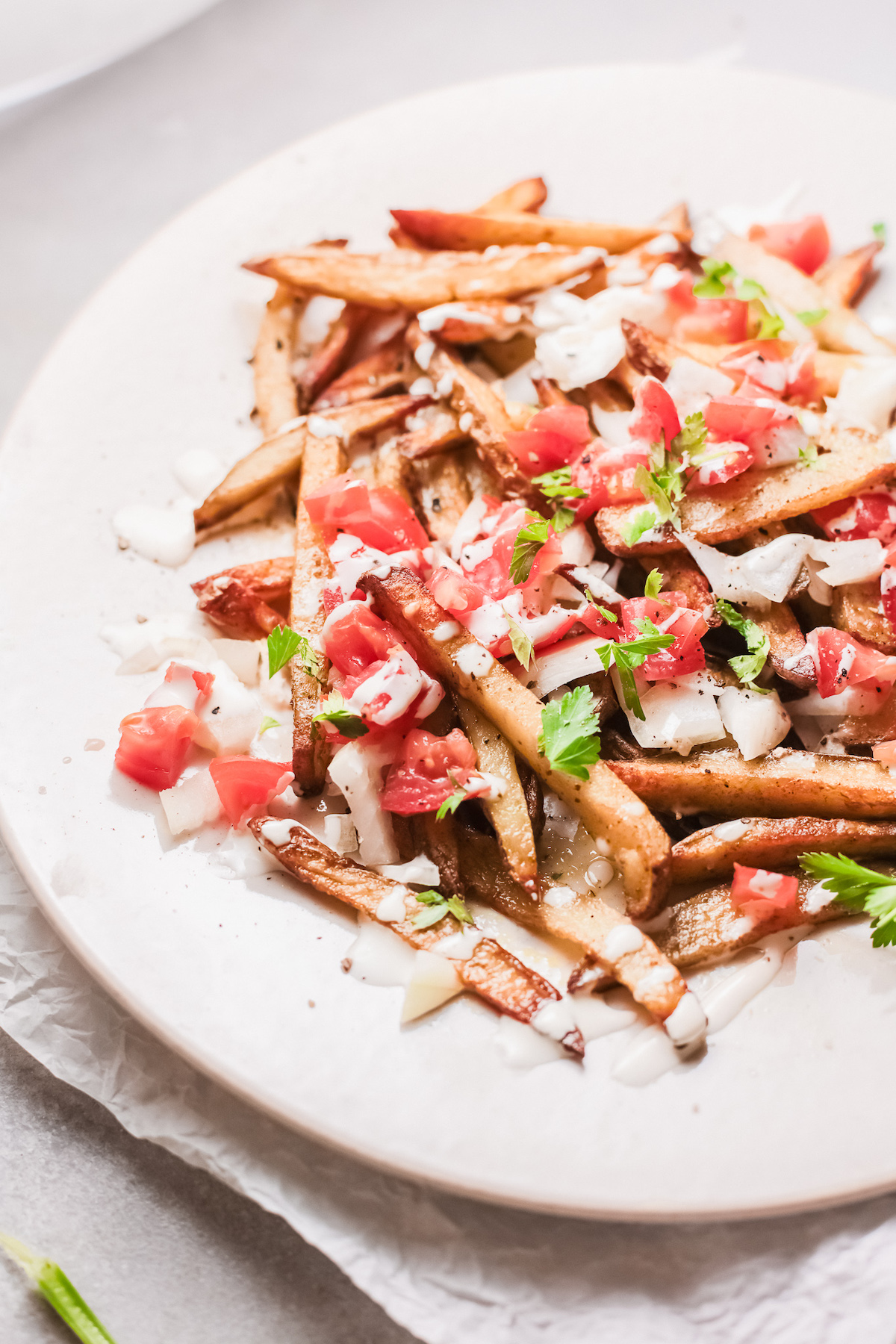 a serving of loaded french fries on a white plate