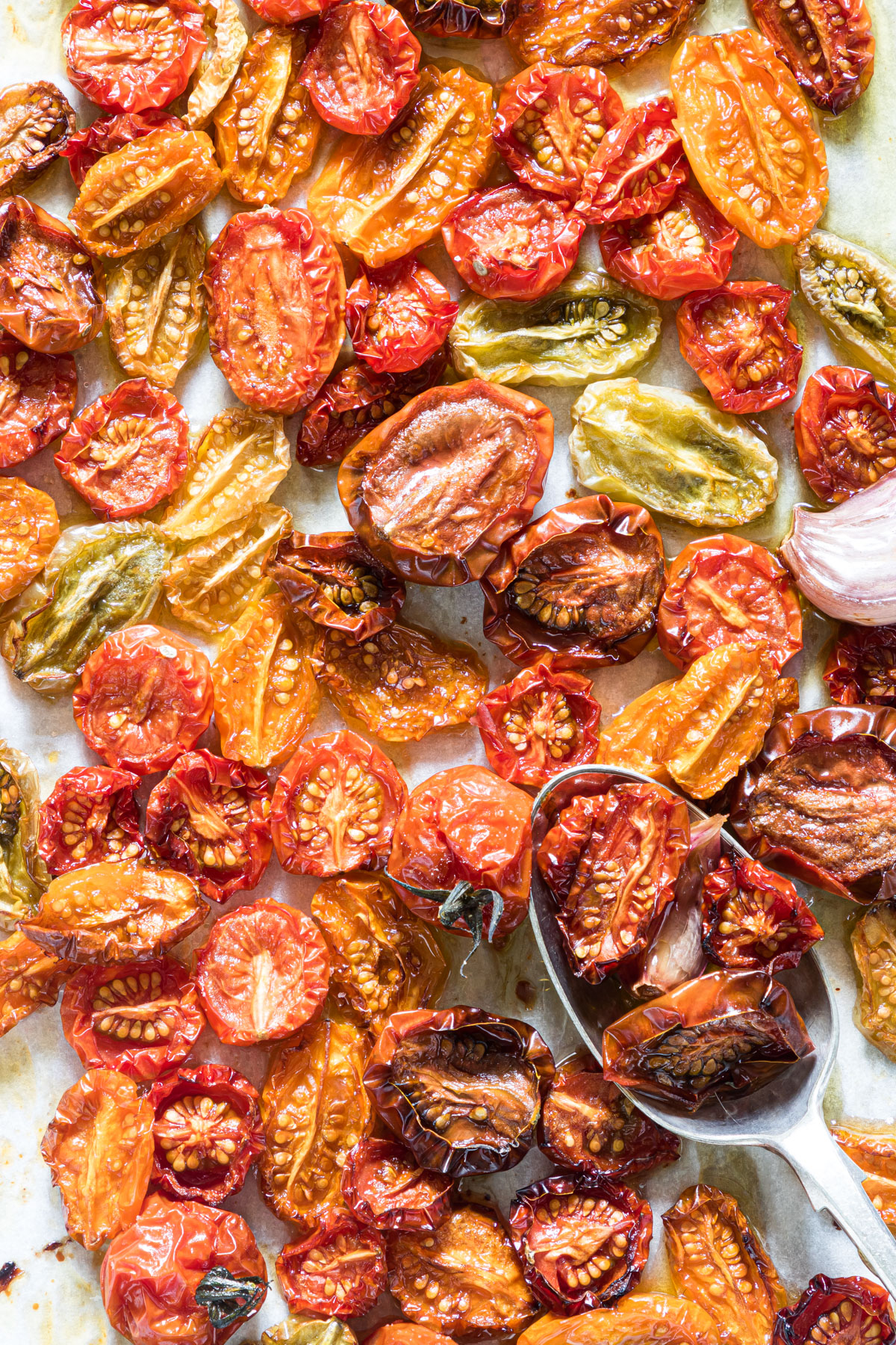 close up of slow roasted cherry tomatoes on a baking tray with a teaspoon added in