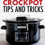 A crock pot against a white background