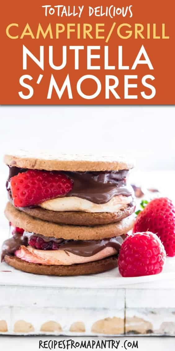 AIR FRYER CAMPFIRE NUTELLA S'MORES
